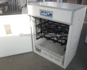 Poultry incubator Live ostrich for sale WQ-176 poultry incubator for ostrich