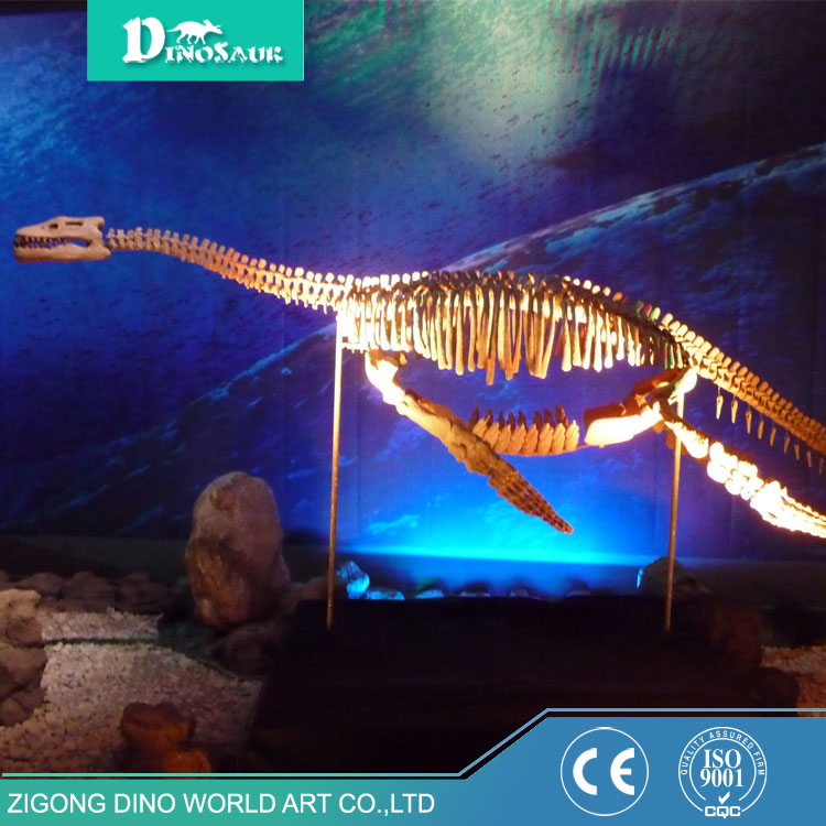 Alibaba Made in China Hanging Dinosaur Skeleton