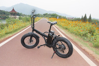 Racing electric bike pocket electric fat bike folding