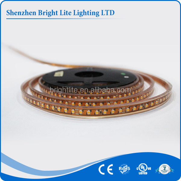 led strip light 24v 120led IP67 Red Color 5050 ribbon led light