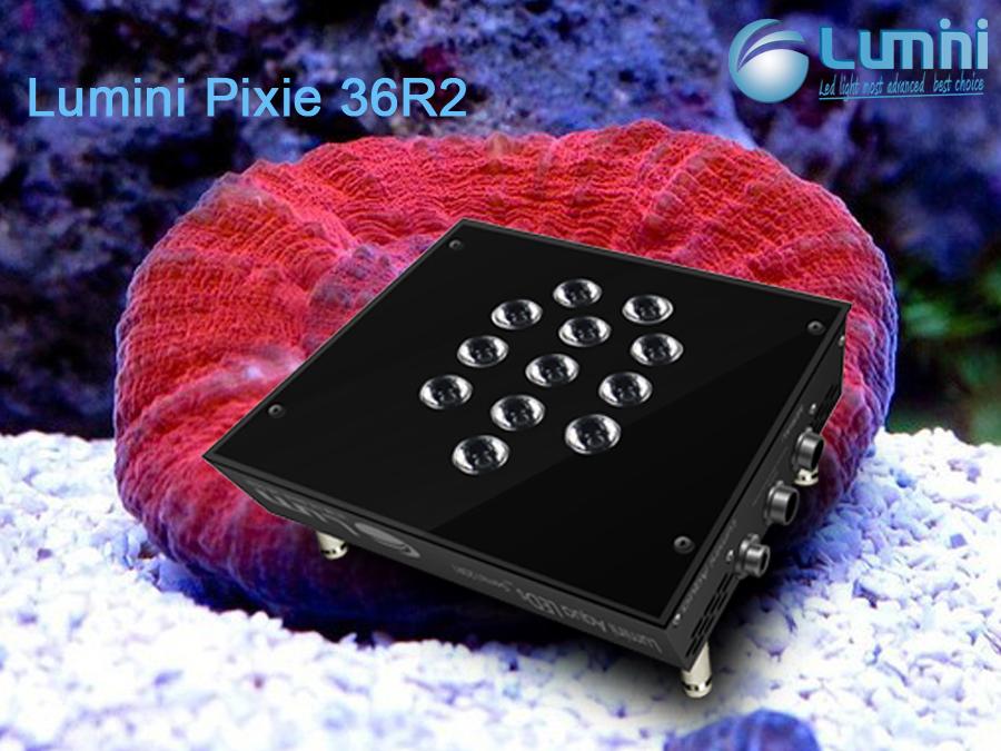 Lumini Pixie36r2 Nano Eclairage Dimmable Conduit Pour Aquarium