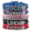 Free Customized Letters Numbers Dog Collars Personalized Snake Leather Dog Pet Puppy Collar