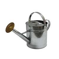 YS brand custom galvanized plant watering can