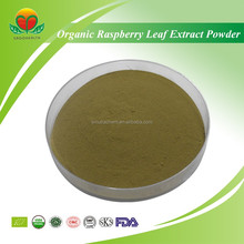 Manufacture Supply Organic Raspberry Leaf Extract Powder