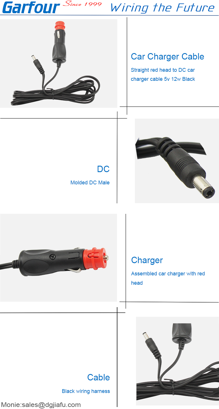 12V 24V DC  2.1mm x 5.5mm plug car battery camera charger 12v