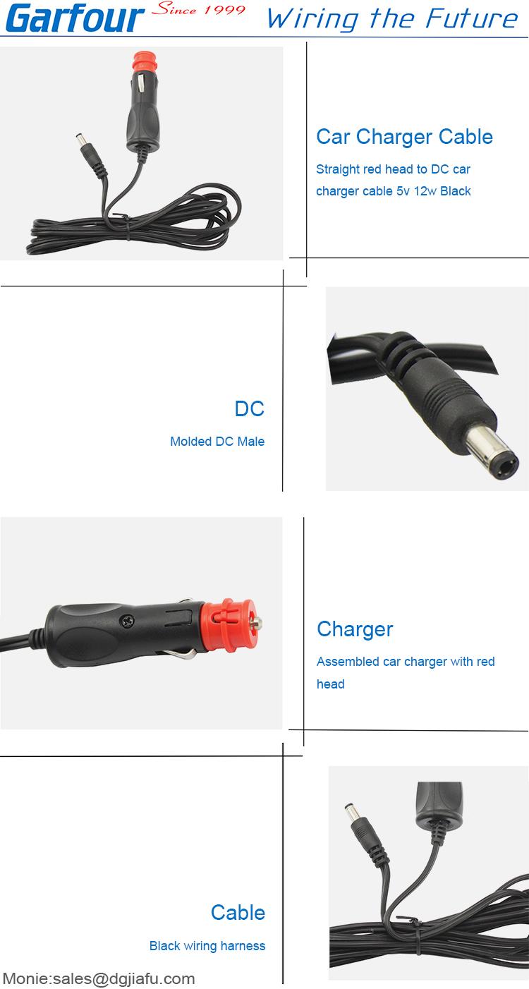 12V 24V DC 2.1mm x 5.5mm plug auto batterij camera oplader 12v