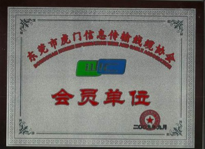 Donguan informaiton wires and cable association