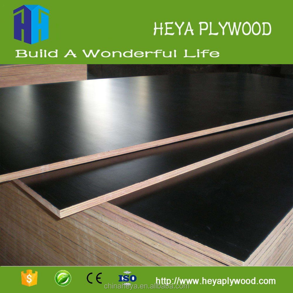 5mm 5 x 10 thickness malaysia birch plywood 10 sheet ply price