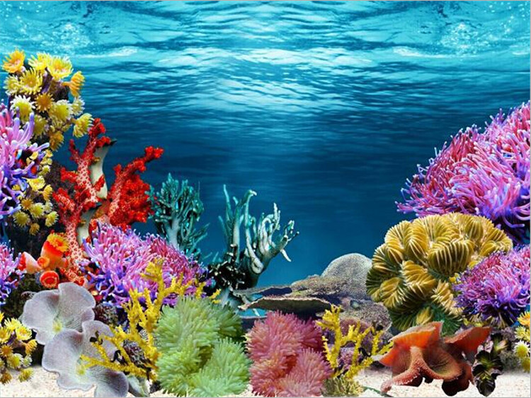 Single Side Aquarium Fish Tank Decorative Wall Background Paper