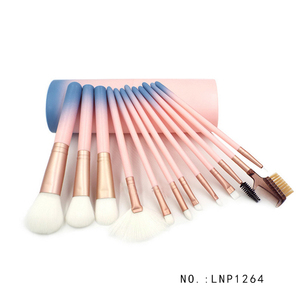 Professional china wholesale Cosmetic Pink 12 pieces makeup brush set with leather tube holder