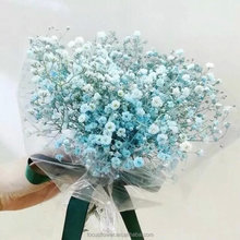 preserved flower flowers gypsophilas rose importers Preserved Fresh Flower as a gift