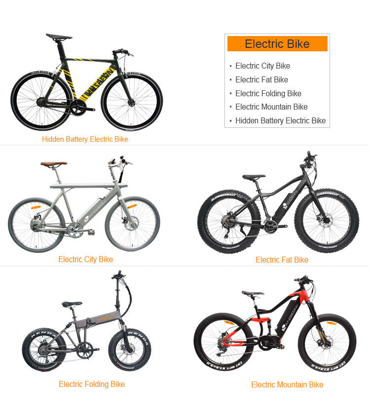 Fashioned Rear Motor Electric Fat Bike Full Suspension Electric Bike EB-12