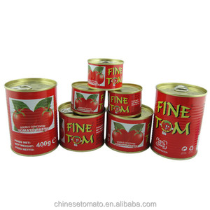 gino tin/can tomato paste West Africa from China manufacturer