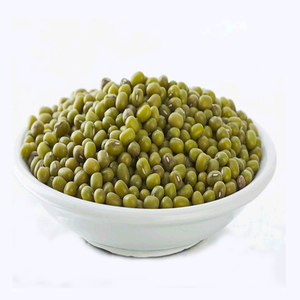 Organic delicious green mung beans buyers