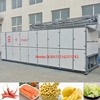 Stainless steel 2 t per day capacity vegetable fruit mesh belt dryer