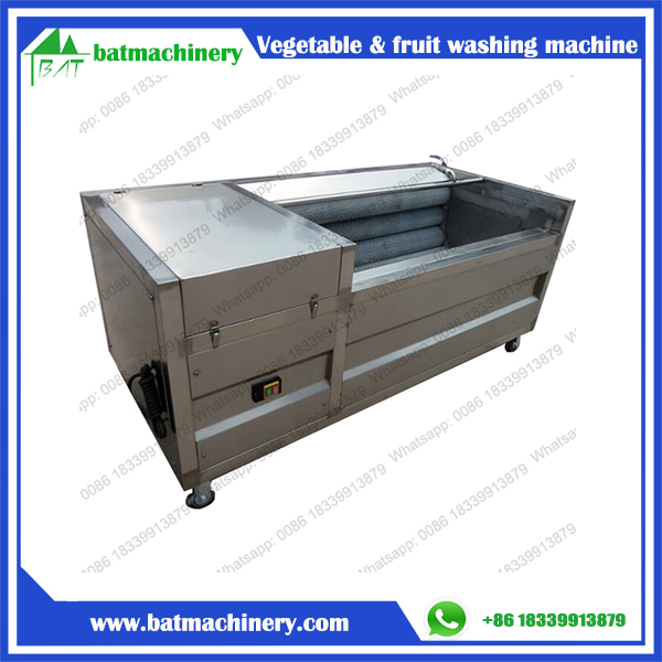 Carrot Sweet Potato Glass Fruit Vegetable Washing Machine