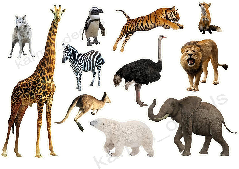 Cheap Animals Madagascar Movie Find Animals Madagascar Movie Deals