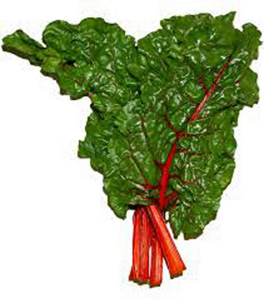 Swiss Chard Meaning In Hindi