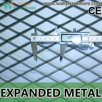 expanded metal for trailer flooring/expanded metal mesh philippines/walkway with aluminum expanded metal