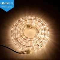 The best Copper led rainbow rope light
