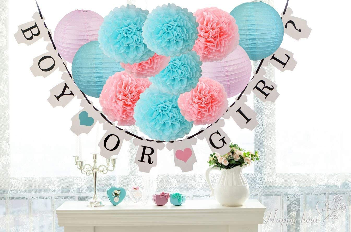 Gender Reveal Party Supplies Baby Shower Decorations Banner with Tissue Pom Poms Paper Lanterns Baby Blue Pink for Birthday/Pink and Blue Decorations /Gender Reveal Decorations
