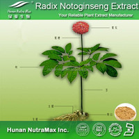 Promotional Radix Notoginseng Extract Powder (4:1,5:1 or other ratio) for sales