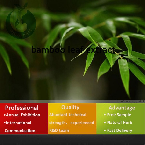 honghao 100% natural free sample bamboo leaf extract