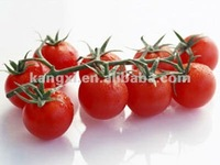 2012 GMP stable high yield and high budding prunus pseudocerasus Lycopersicum esculentum seeds & all kinds of vegetable seeds