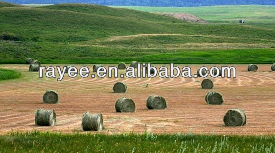 alfalfa hay bales net for sale,cheap