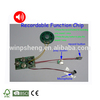Greeting Card Sound Module/Motion Activated Sound Module