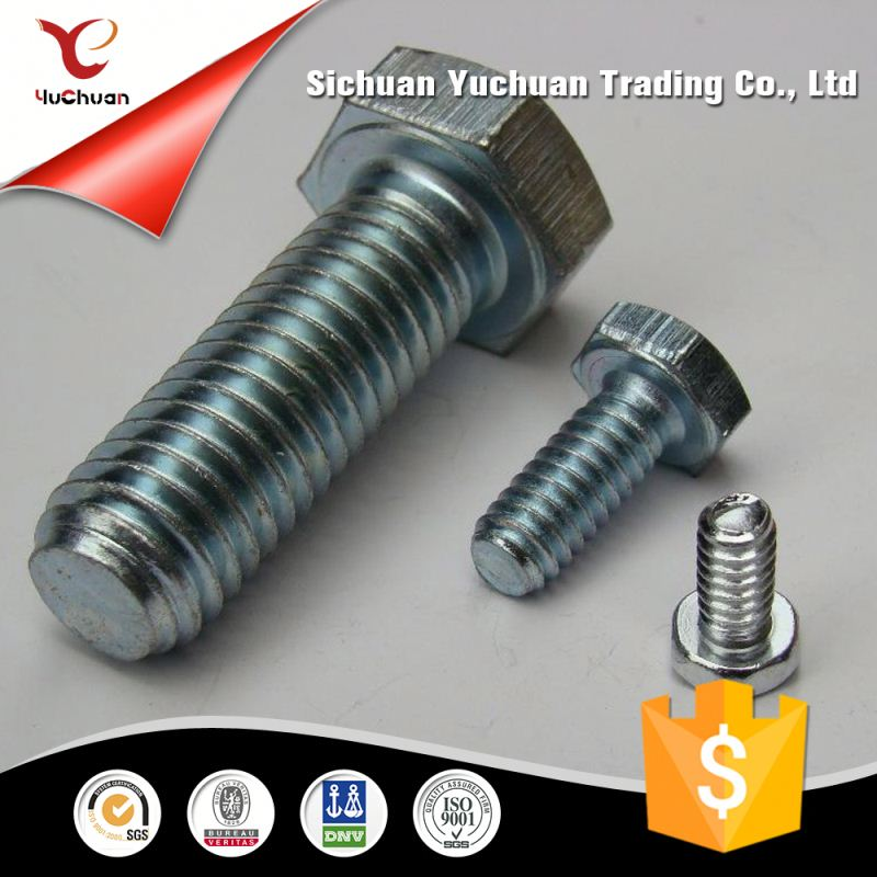 Stainless Steel Custom Bolts