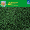 2016 New High Quality iqf cut long bean