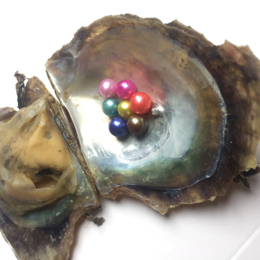 Pearl oyster mother with pearl canned