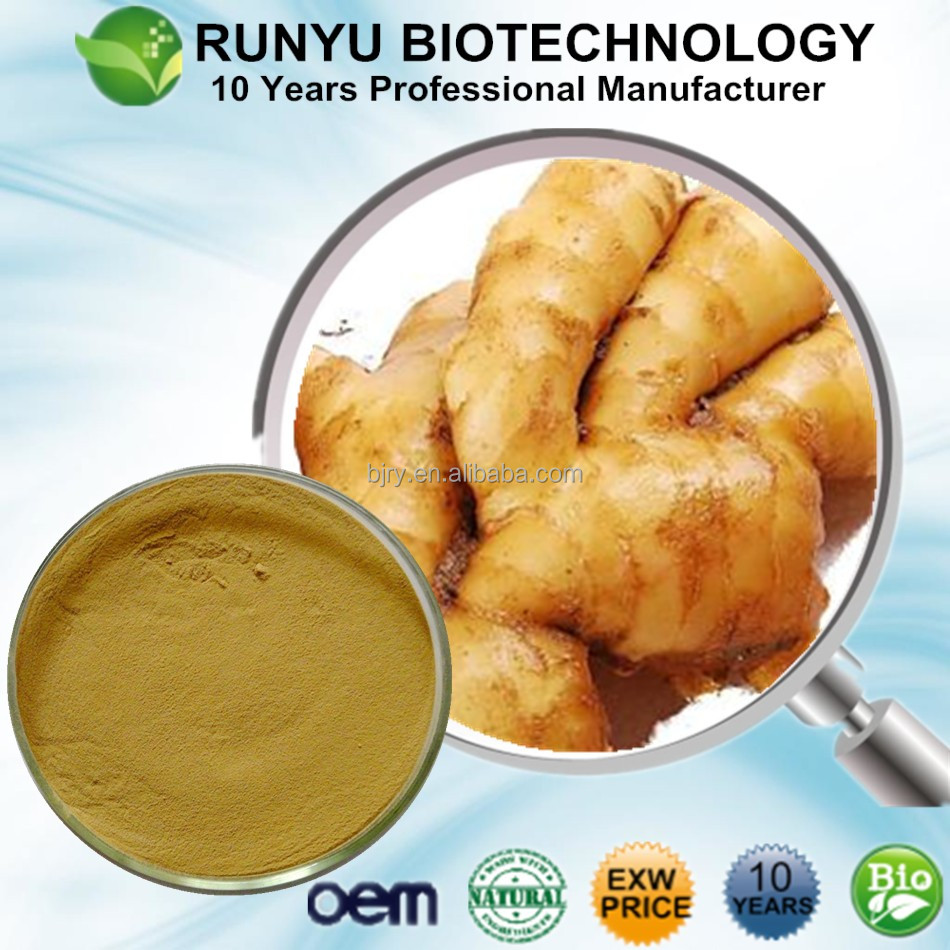 Runyu Wholesale natural Water solubal Gingerol, Organic 6-Gingerol by quick delivery