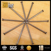 High Precision Wholesale Fashion Designer Common Steel Nails For Construction