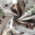 China supplier digital printing polyester textile sofa fabric