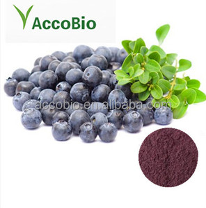 Bulk Supply Euterpe badiocarpa Extract 10: 1/Acai Berry Extract Powder in Bulk