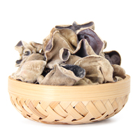 Detan Fresh White-backed Black Fungus/Agaric for Mushroom Buyers