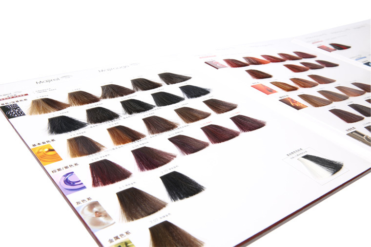 Various Chart Of Hair Colors,Hair Color Shades Book For Salon Hair ...