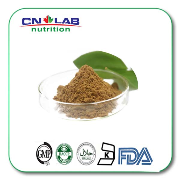 Food grade Black Cohosh Extract 2.5% Total Saponins Test by HPLC