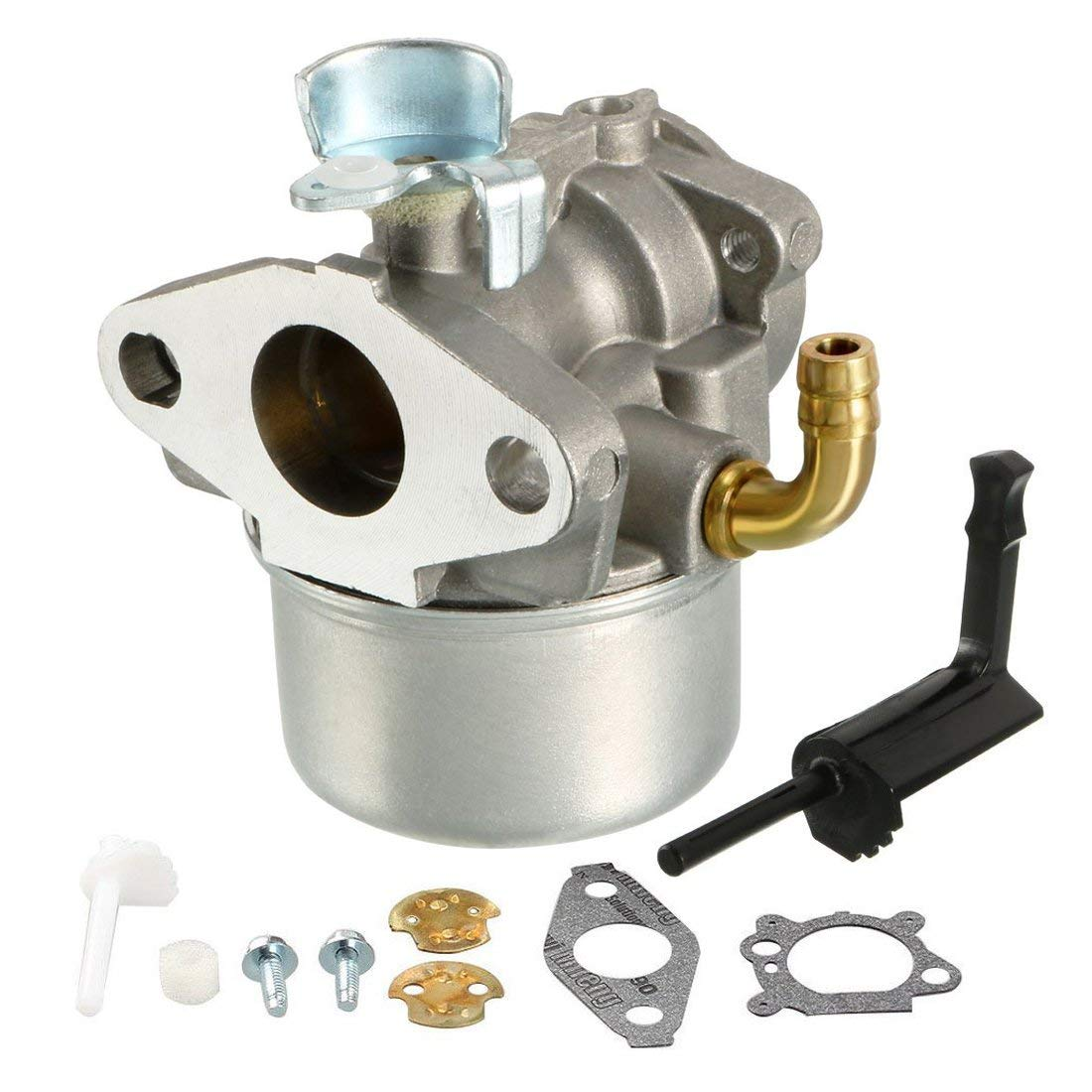 An Ruijia 798653 Carburetor for Briggs & Stratton 791077, 696981, 698860, 790182, 694508, 795069, 698859, 790180, 790290, 693865, 697354 Engine Carb with Gasket