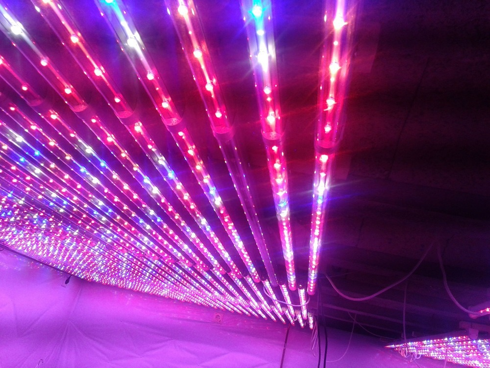 Promotion 20w T8 Led Grow Tube Light For Indoor Vegetable