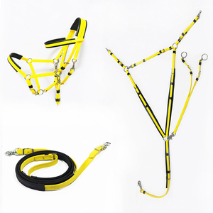New Style color combinations pvc endurance bridle halter