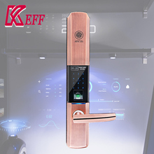 Cheapest outdoor digital fingerprint door lock With Good Service