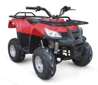EPA FOUR WHEEL 110CC ATV QUAD BIKE FOR SALE