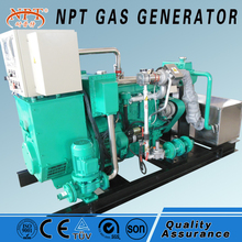 China CE approved 40kw quiet generator bio gas power plant price