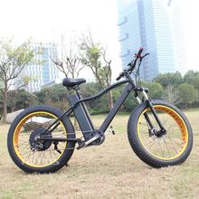 an electric bicycle foldable e bikes fat tyre mountain use