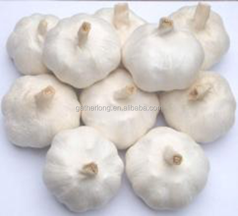 Best choice products ground garlic of good price