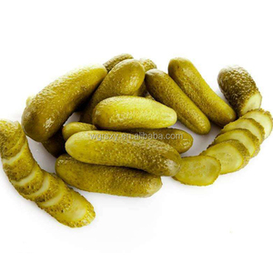 High Quality Vietnam Canned Baby pickled Cucumber Gherkins in Salt Brine