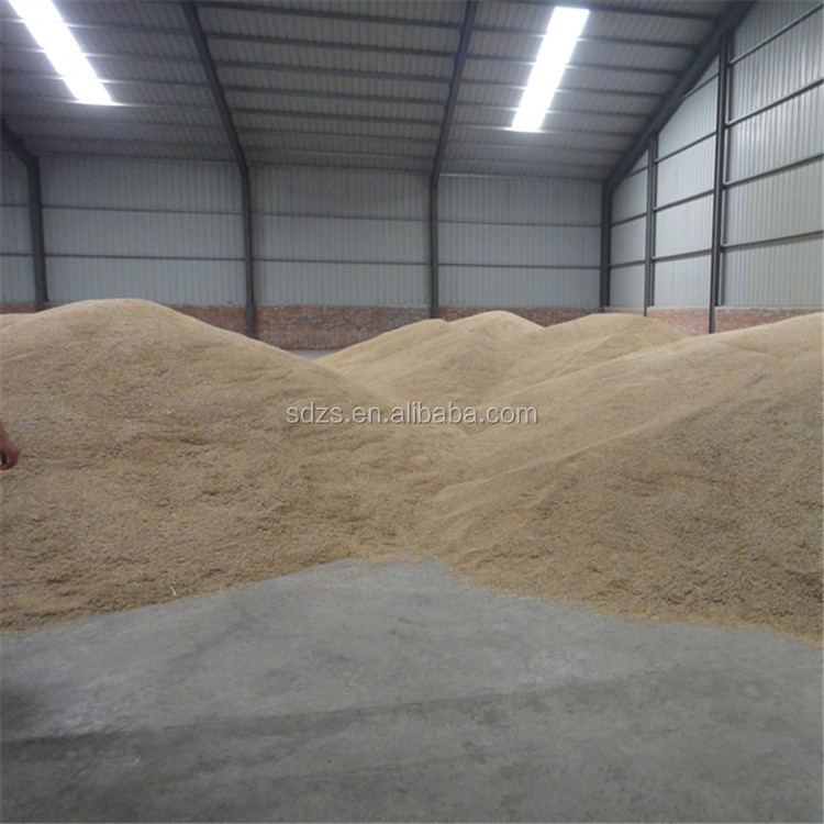 Raw oat for horse
